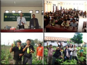 training produk nasa di sampit