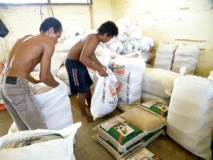 packing benih kemasan dalam karung