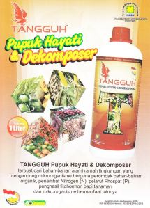 Tangguh Decomposer